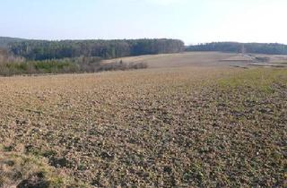 Grundstück zu kaufen in 7501 Oberdorf im Burgenland, Baugrund im Land der Sonne 4