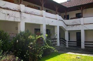 Wohnung mieten in Windfeld, 3361 Mitterhausleiten, Sonnige Wohnung in Ortsrandlage