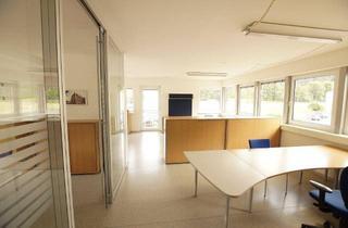 Büro zu mieten in 9811 Lendorf, Büro mit perfekter Infrastruktur!