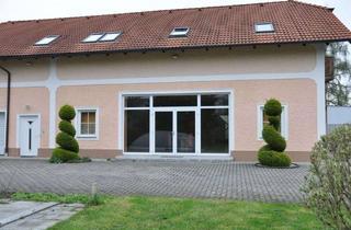 Wohnung mieten in 4062 Thening, BÜRO / ATELIER / STUDIO