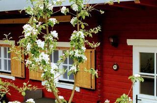 """Wohnung mieten in Siedersgraben, 3400 Klosterneuburg, MONTEZILA Blockhütte mit 40 """"TV & WLAN"""