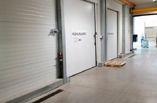 Büro zu mieten in 6060 Hall in Tirol, Lager für Kühl- u. Trockenware, 4 Rampenplätze, Freifläche und Büro