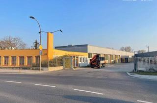 Büro zu mieten in 2481 Achau, Glossflächiges Werkstattobjekt mit Freiflächen