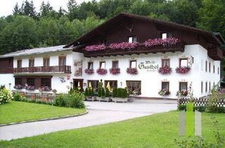 Gewerbeimmobilie kaufen in 4852 Weyregg am Attersee, Uriges Gasthaus in schöner Naturlage mit Gästezimmern