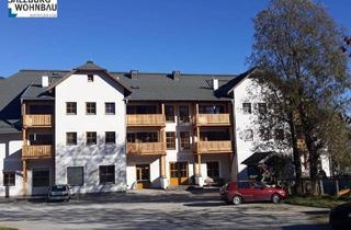 Geschäftslokal mieten in Markt 393, 5570 Mauterndorf, Geschäftslokal in Mauterndorf zu vermieten!