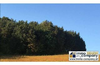 Gewerbeimmobilie kaufen in 7540 Güssing, ***Mischwald in der Thermenregion Stegersbach***